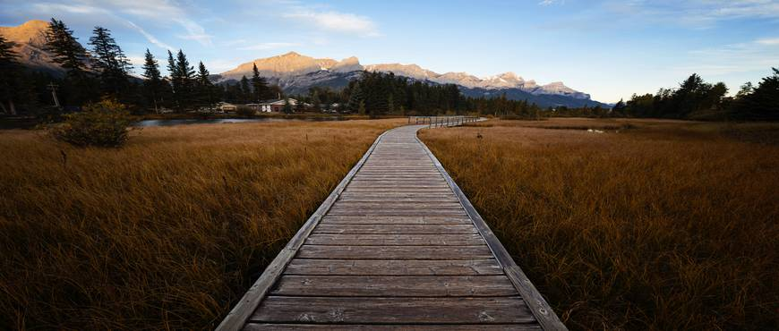 Experiencia de las Montañas Rocosas en Calgary y Banff