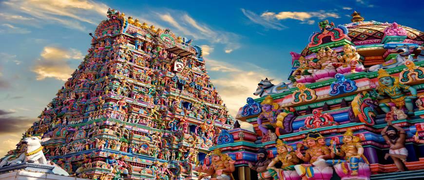 El Sur de India - Privado